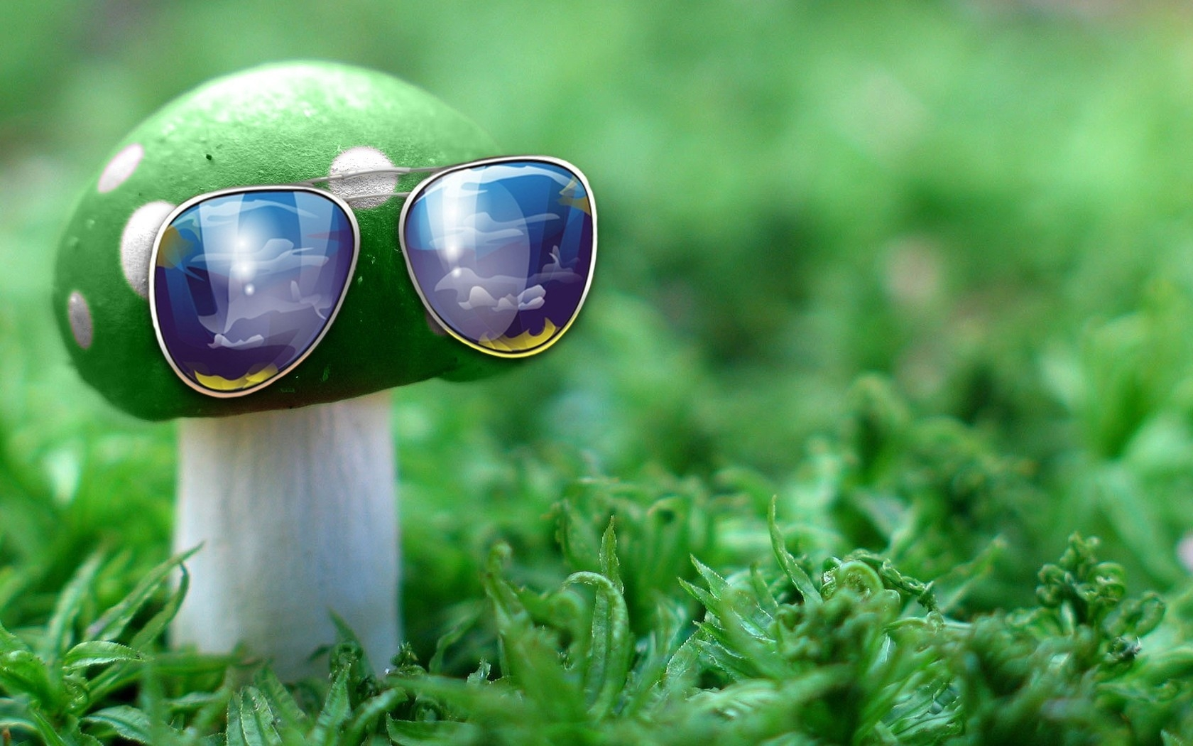 sunglasses-mushroom-IDEA-creative-grass-unusual-1067101-wallhere.com